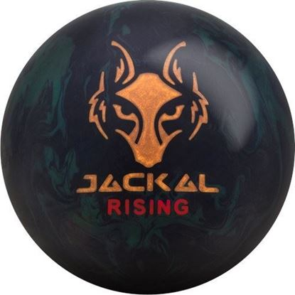 Picture of Jackal Rising